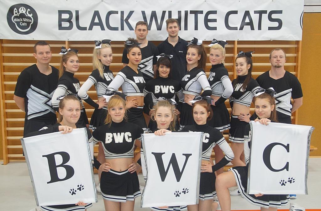 black white cats 2016
